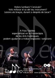 fisio-taddeo-musica